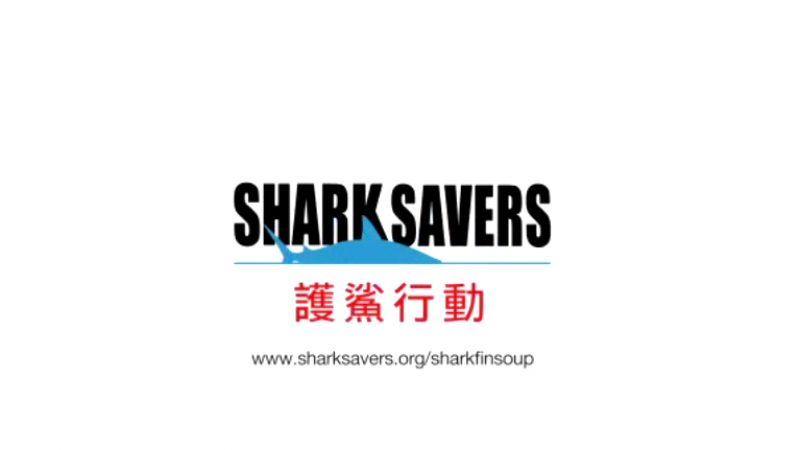 Sharksavers.org